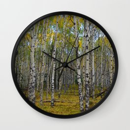 Trembling Aspen's in the Fall, Jasper National Park Wall Clock