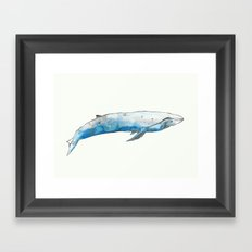 Lonely Whale Framed Art Print
