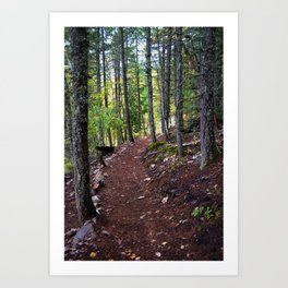 The Revelstoke Trail I Art Print