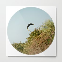 """CREEPING IN"" kitesurf . kite . surf Metal Print"