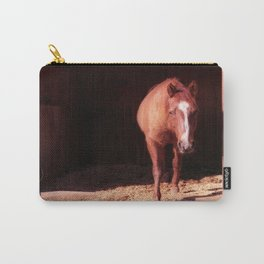 Jessy Carry-All Pouch