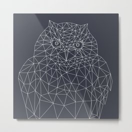 Interconnected Owl Metal Print