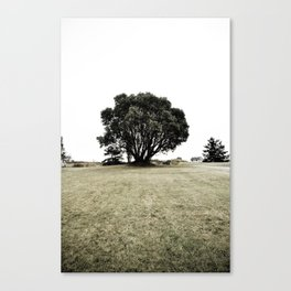 haunted (two) Canvas Print