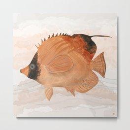 Threadfin Butterfly-fish - exotic aquatic beauty Metal Print