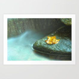 Misty Leaf and Waterfall Nature / Botanical Photograph Art Print