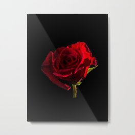 Red rose…bright colors - 162 Metal Print