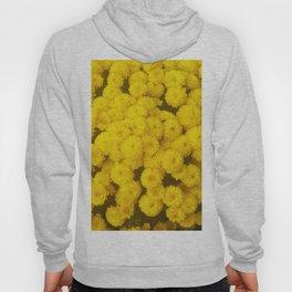 Autumn Gold - Chrysanthemums Hoody