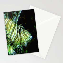 Coloured Fish Stationery Cards