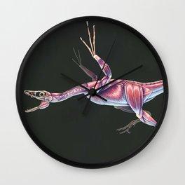 Microraptor Gui Muscle tudy (No Labels) Wall Clock