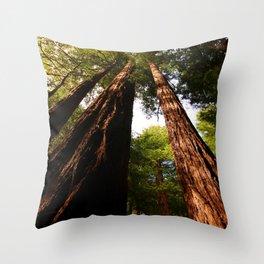 Redwood Tree Tops Throw Pillow
