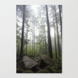 Below Giants Canvas Print