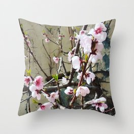 Stone in flower Throw Pillow
