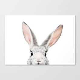 Hello Bunny Canvas Print