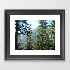 The Ancient Days Framed Art Print