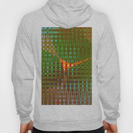 COLOR ABSTRCT Hoody