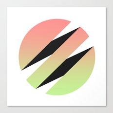 3z Canvas Print