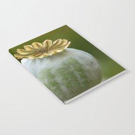 Poppy 280 Notebook