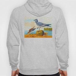 Fork tailed Gull John James Audubon Scientific Birds Of America Illustration Hoody
