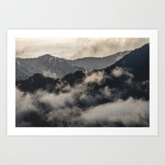 Snow Fog Mountain Olympic National Park foggy forest trees travel love adventure wild america sky 1 Art Print