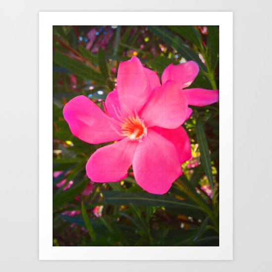 FLOWER N73 Art Print