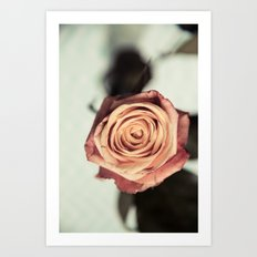 Yellow Vintage Rose Art Print