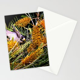 Dropping In For Lunch Stationery Cards