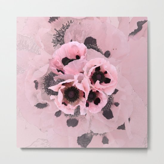 Poppies in the pink Metal Print