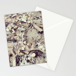 SandShells Stationery Cards