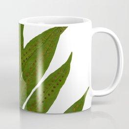 Tropical Fern Botanical Coffee Mug