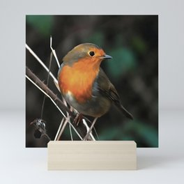 Being Bright On A Dull Day Mini Art Print