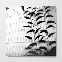 Kelp Wall in Black and White Metal Print