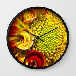 Gerbera Daisy 3 Wall Clock