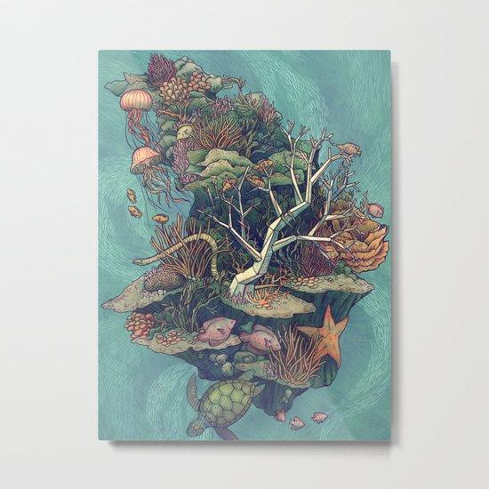 Coral Communities Metal Print
