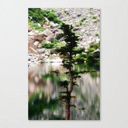 Natural Peace Canvas Print