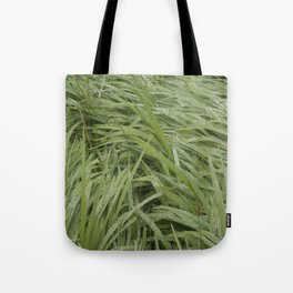 California Grass & Dew Tote Bag