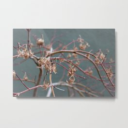 WITHER Metal Print