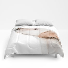 smell this Comforters