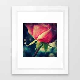Dark Rose Framed Art Print