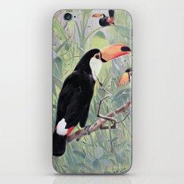 Kuhnert, Friedrich Wilhelm (1865-1926) - Wild Life of the World 1916 v.2 (Great Toucan) iPhone Skin