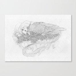 Nafarie Canvas Print
