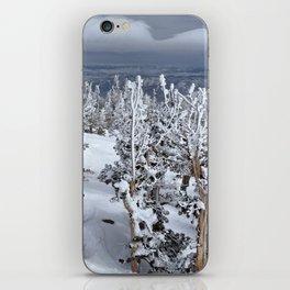 Mt Rose iPhone Skin