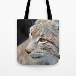 Young lynx close-up portrait Tote Bag