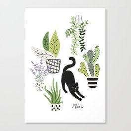 Black cat and plants in the pots. Morning stretch Canvas Print