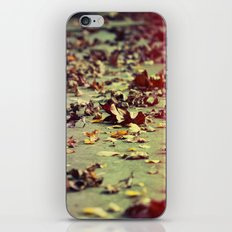 Where It Leads iPhone & iPod Skin