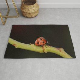 Ladybug On A Twig Rug