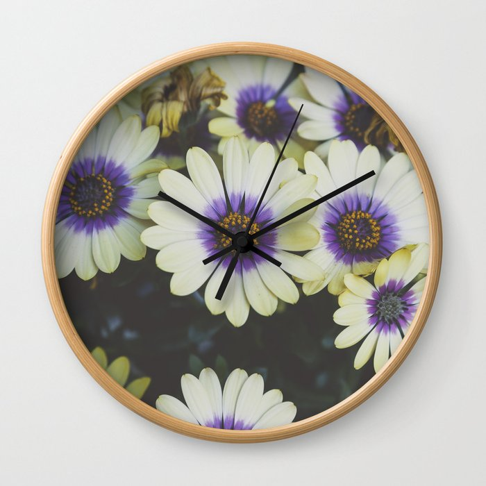 African Daisy Wall Clock