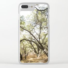 Covered Trail Clear iPhone Case
