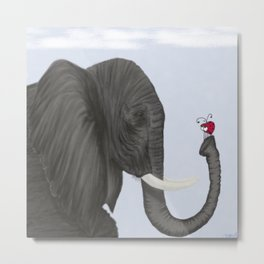 Bertha The Elephant And Her Visitor Metal Print