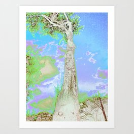 Heights Art Print