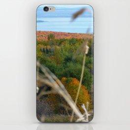 Fall in colors iPhone Skin